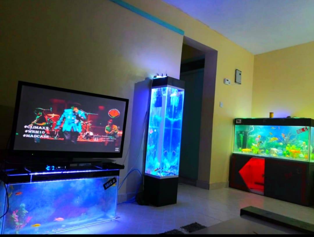 Irie Aquariums